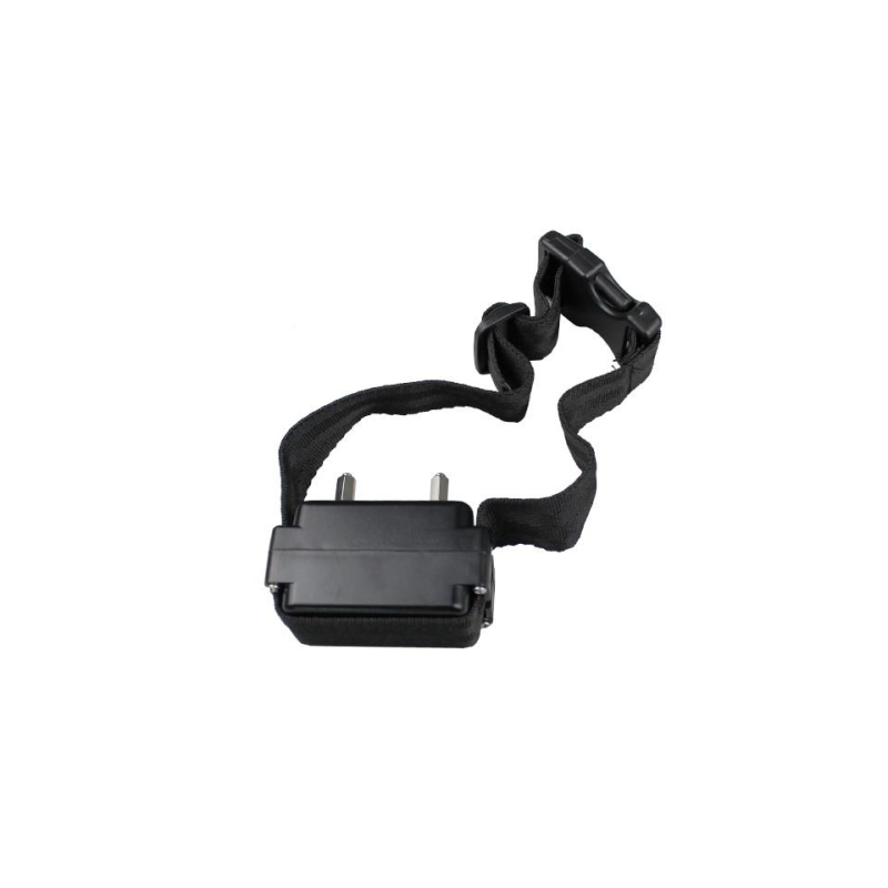 Perimetru electronic invizibil BENTECH W227